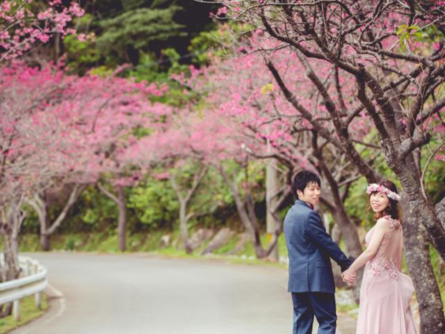 【冬の沖縄イチオシ!】桜のフォトウェディング体験