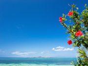 沖縄方言「なんくるないさー」の本来の意味