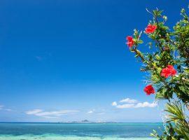 ハネムーンなら沖縄を選んで!100点満点のリゾートウェディングを叶える秘訣って?