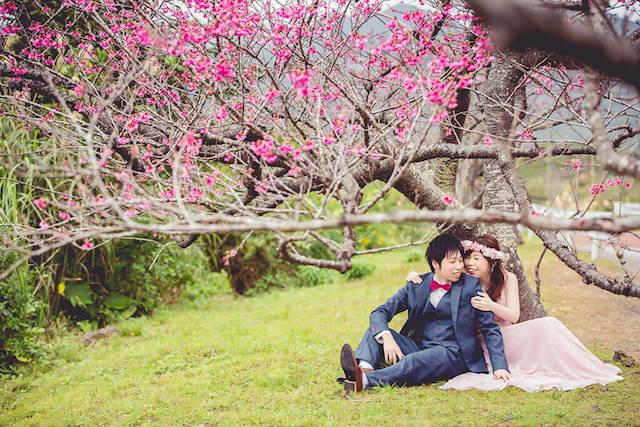 《1月》真っピンクな桜の木の下でフォトウェディングを♡
