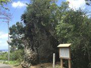恩納村真栄田の歴史道散策(フェーレー岩)
