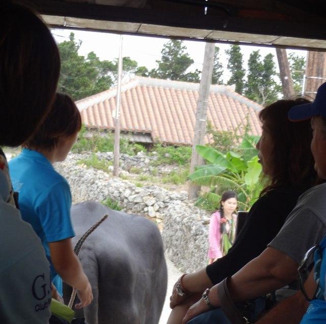 八重山諸島:竹富島紀行|水牛車の風景