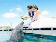 イルカと一緒に結婚式!?ルネッサンス・リベーラ教会で最高のリゾート婚(口コミ多数)