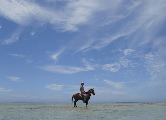 沖縄で楽しく乗馬体験!おすすめスポットをご紹介♪(口コミ多数)