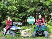 亜熱帯のジャングルを爽快にバギーで疾走体験!