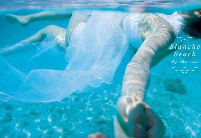 どこよりも水中撮影にこだわったスタジオ、ブランシェビーチを紹介