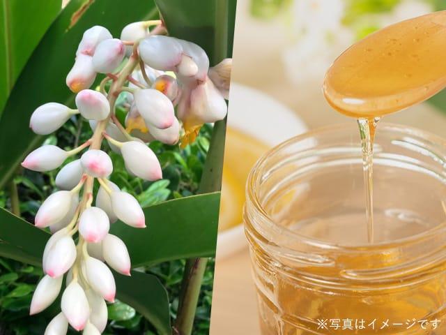 FROMO 月桃ハーブ水とはちみつ化粧水とは?香りで差が付く引き出物