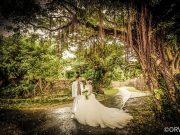 沖縄ウェディングで婚姻届を提出しよう!沖縄限定の婚姻届やサービスを紹介